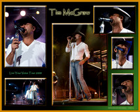 Tim McGraw - Tour 2008